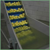 Eillert Conveyor belts for root vegetables
