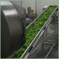 Eillert Conveyor belts for leaves