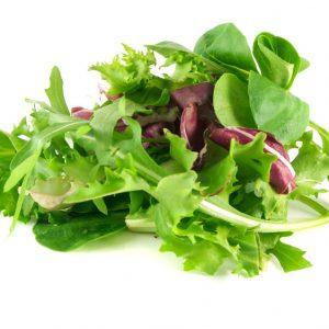 Salad & Vegetable Processing